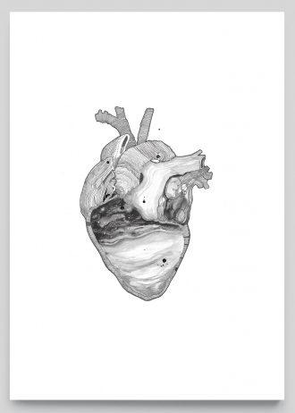 3. Heart, Print Shop